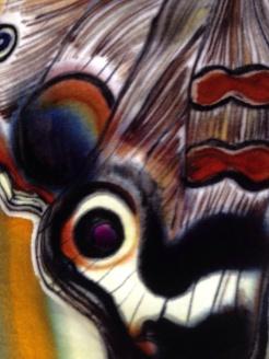 Butterfly serie, detail of velvet silk